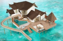 Private-Ocean-Retreat-with-Slide-Aerial-View-illustration